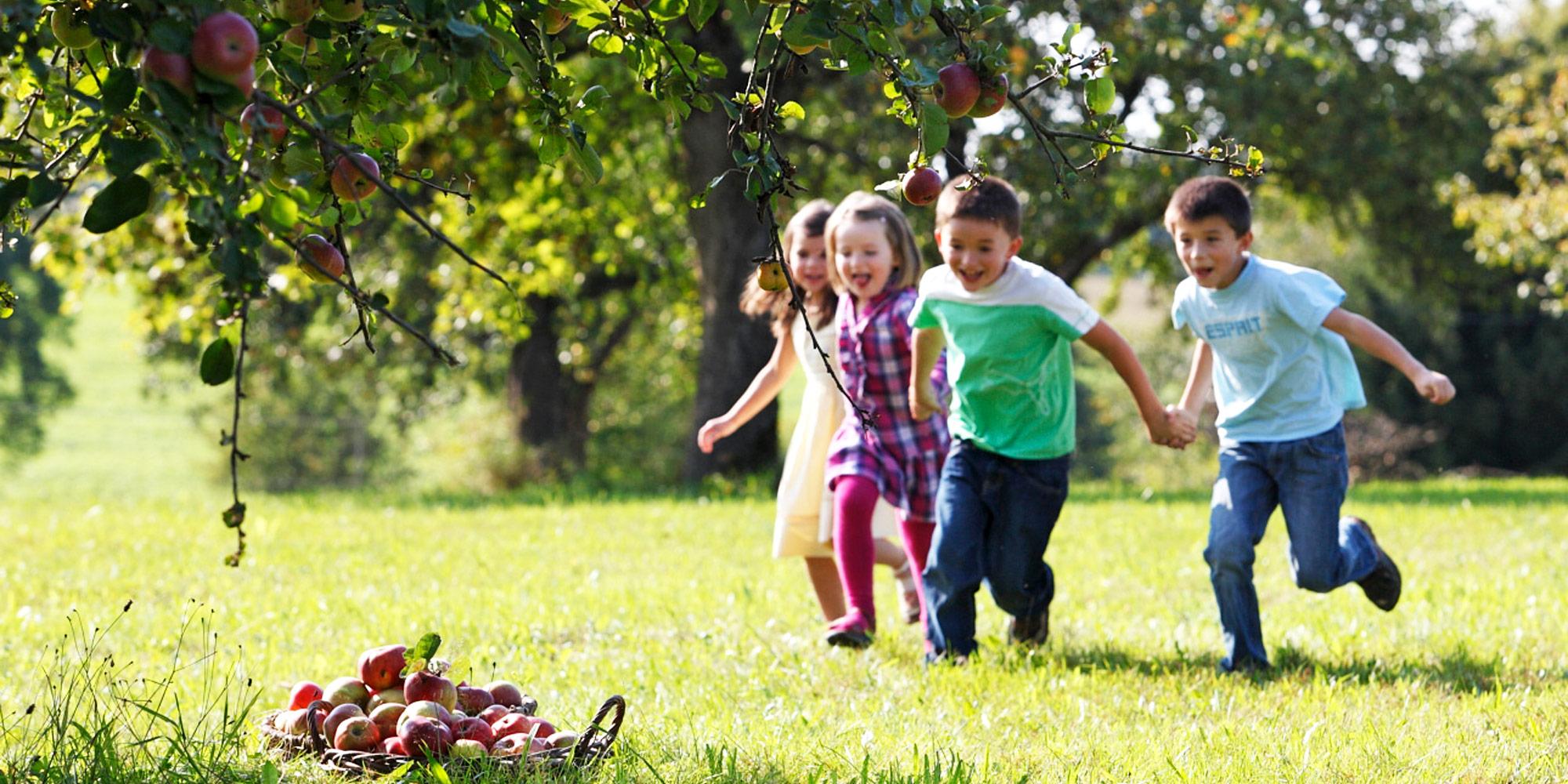 Kinder-Apfelbaum