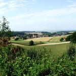 beutelsbach-ortsansicht