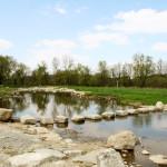 vilshofen-an-der-donau-lebendige-vils-trittsteine