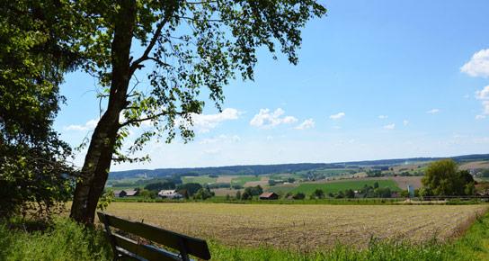 hofkirchen-burgruine-hilgartsberg-titel